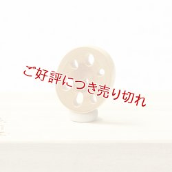 画像1: 黄楊根付 レンコン(A)【2019年10月15日】
